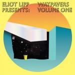 eliot_lipp_wavepavers