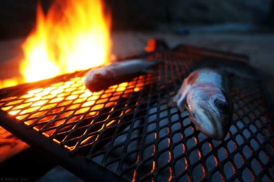IMG_5988_trout_grill