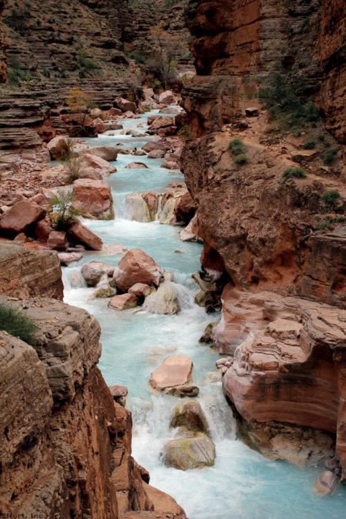 IMG_6112_havasu_creek